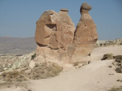 Η μοναχική καμήλα